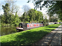 TQ2282 : Gremlin, from Vale of Pewsey - narrowboat on Paddington Arm, Grand Union Canal by David Hawgood