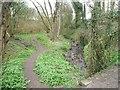 SE0917 : Longwood Brook [2] by Christine Johnstone