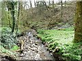 SE0917 : Longwood Brook [3] by Christine Johnstone