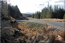 NN0408 : New forest road above Douglas Water by Alan Reid