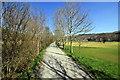 SH7218 : Riverside Walk at Dolgellau by Jeff Buck