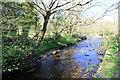 SH7217 : Tributary to the Afon Wnion by Jeff Buck
