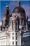 SJ3390 : Liverpudlian domes by Chris Denny