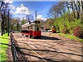 SD8303 : Heaton Park Tramway, Outside the Museum by David Dixon