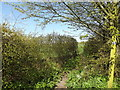 TM2580 : Footpath to Mill Lane by Adrian Cable