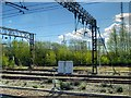 SJ3789 : Overhead Gantries and Gas Holder near Edge Hill Station by David Dixon