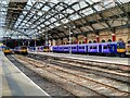 SJ3590 : Liverpool Lime Street Station, Platforms 1 to 4 by David Dixon