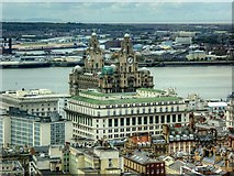 SJ3490 : View from St John's Beacon towards the India Buildings and Royal Liver Building by David Dixon
