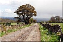 SK3069 : Loadshead Lane by Graham Hogg