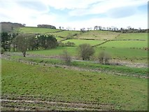 NZ8204 : A patchwork of fields, below Lease Rigg by Christine Johnstone