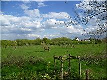 TQ4476 : Part of Woodlands Farm by Marathon