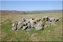 SO2556 : Rocks on Hergest Ridge by Philip Halling