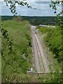 SK6823 : View above Grimston Tunnel by Alan Murray-Rust