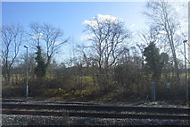 SP2391 : Leicester to Birmingham Line by N Chadwick