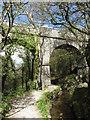SX0557 : Footpath beneath Treffry Viaduct by Gareth James