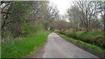 NH5857 : Single track road by Easter Oak Wood by Alpin Stewart
