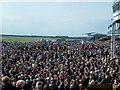 TL6262 : Packed crowd at The Rowley Mile Racecourse, Newmarket by Richard Humphrey