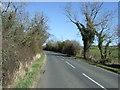 NU1404 : Minor road towards Swarland by JThomas