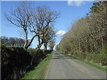 NU1604 : Minor road towards Newton on the Moor by JThomas