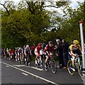 SE2144 : Tour de Yorkshire riders on the Cote de Chevin by Rich Tea