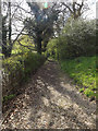 TM3372 : Churchyard path to the B1117 Church Road by Adrian Cable
