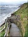 NZ3475 : Steps down to Hartley Bay by Mick Garratt