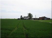 TF1839 : Farm in Little Hale Fen by Jonathan Thacker