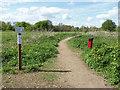 TQ0866 : Path on Desborough Island by Alan Hunt