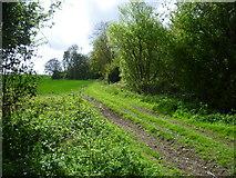 TQ6761 : Field edge below Birling Place Farm by Marathon