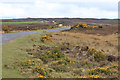 SE6592 : Moorland edge by Pauline E