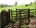 SO5824 : Churchyard gate to the Herefordshire Trail, Bridstow by Jaggery