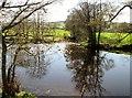 SE1566 : Foster  Beck  enters  the  river  Nidd by Martin Dawes