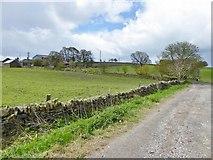 SK3069 : Rodknoll Farm from Loadshead  Lane by Chris Morgan