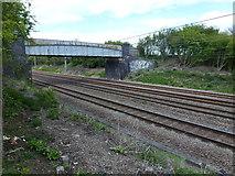 TF0611 : East Coast main line and bridge by Richard Humphrey
