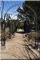 ST8689 : Ironwork Pergola, Westonbirt House by Philip Halling