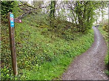 SK2071 : Path to the Monsal Trail from Longgreave Lane by Norman Caesar