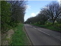 NU1535 : B1342 towards Bamburgh by JThomas