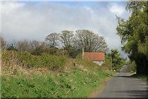SE6691 : Hope Inn Farm by Pauline E