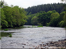 SO0153 : Afon Gwy / Wye River by Alan Richards