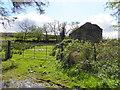 H5383 : Ruined dwelling, Glenmacoffer by Kenneth  Allen