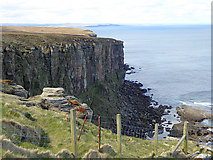 ND2076 : Cliffs west of Dunnet Head by Oliver Dixon