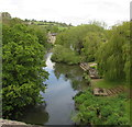 ST8060 : River Avon, Avoncliff by Jaggery