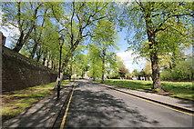 SJ4065 : Castle Drive, Chester by Jeff Buck