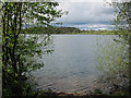 SJ8462 : View north across Astbury Mere by Stephen Craven