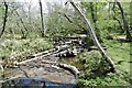 SZ2499 : Wootton, débris dam by Mike Faherty