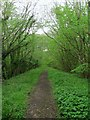 TQ3427 : Former Ardingly Branch Line by Simon Carey