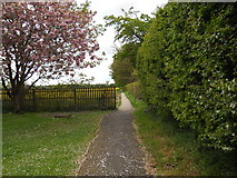 TF1505 : Footpath between Welmore Road and Lincoln Road, Glinton by Paul Bryan