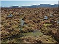 NC8623 : Bog on the top of Cnoc Ascaig, Sutherland by Claire Pegrum