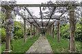 TQ2997 : Wisteria Archway, Trent Park, Cockfosters, Hertfordshire by Christine Matthews