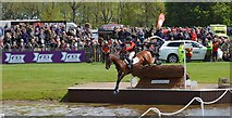 ST8083 : Badminton Horse Trials 2015: cross-country fence 12a The Lake by Jonathan Hutchins